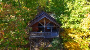 Experience The Fall Colors Like Never Before With A Stay At The Treehouse Cabins In North Carolina