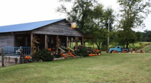 Pick And Paint Your Own Pumpkins Then Enjoy Endless Activities At The Belue Place Pumpkin Patch In Alabama