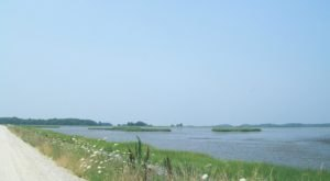 Bombay Hook Is A Scenic Outdoor Spot In Delaware That's A Nature Lover's Dream Come True