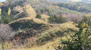 Loess Hills Ridge Trail Is One Of The Best Fall Hikes In Iowa With Its Rolling Hills Of Color
