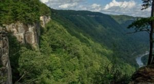 The Fern Creek Area Of The Endless Wall Is A West Virginia Adventurer's Paradise