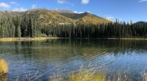 The Easy, Scenic Horseshoe Lake Trail In Alaska Is A Trail The Whole Family Will Enjoy