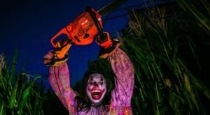 This Haunted Corn Maze Is Returning To Arizona This Autumn And It's Absolutely Terrifying