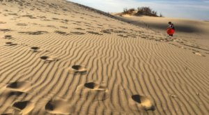 Monahans Sandhills State Park Is A Fascinating Spot In Texas That's Straight Out Of A Fairy Tale