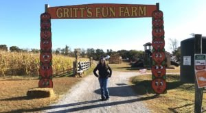 Take A Stroll Through A Field Of Sunflowers Or A Maze Of Corn At Gritt's Farm In West Virginia