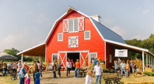 Don't Miss The Harvest Market At Red Bird Farm, An Outdoor Fall Shopping Event In Oklahoma