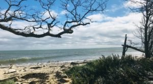 This 1-Mile Trail At Ellisville Harbor State Park In Massachusetts Takes You To A Nearly Empty Beach