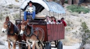 Take A Trip Back In Time On This Covered Wagon Tour In Southern California That's Right Out Of The Old West