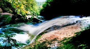 Hike Through A Rain Forest Filled With Waterfalls At Gorges State Park In North Carolina
