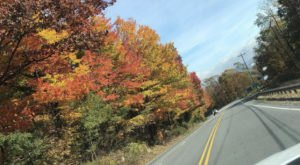 According To The 2020 Fall Foliage Prediction Map, Here's When You Can Expect The Colors To Peak In Your Part Of North Carolina