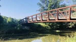 Take The Big Beech Trail In Kentucky With Bridges, Water, Views, And Plenty Of Natural Beauty
