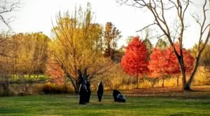 Take This Spooky, Lantern-Lit Walk At Morris Arboretum For A Bone-Chilling Halloween Experience In Pennsylvania