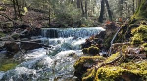 A Trail Full Of Cascade Stream Views In State Game Lands Will Lead You To A Waterfall Paradise In Pennsylvania