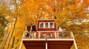 Experience The Fall Colors Like Never Before With A Stay At The Mehoopany Treehouse In Pennsylvania