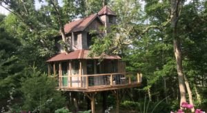 Discover A Tiny Piece Of Paradise When You Check Into Mink Cove Treehouse In Massachusetts