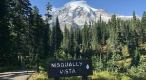 Nisqually Vista Is A Low-Key Washington Hike That Has An Amazing Payoff