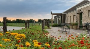 Enjoy Farm-To-Table Fine Dining Kansas Style At Elderslie Farm