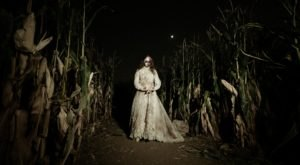This Terrifying Corn Maze In Colorado Is Located Along One Of The Most Haunted Roads In America