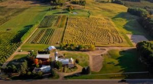 Visiting Jacob's 10-Acre Corn Maze In Michigan Is A Classic Fall Tradition