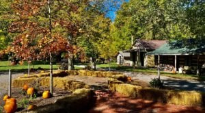The Ohio Ghost Town That's Perfect For An Autumn Day Trip