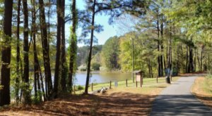 The Hidden Park In North Carolina, Apex Community Park, Is An Outdoor Lover's Paradise