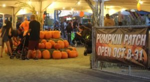 The Halloween Town Pumpkin Patch In Nevada Is A Classic Fall Tradition