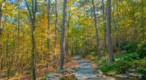 The Garvan Woodland Gardens Tour In Arkansas Is A Classic Fall Tradition