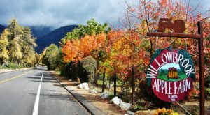 Press Your Own Apple Cider At Willowbrook Apple Farm, A Charming Orchard In Southern California Where Fall Is In Full Swing