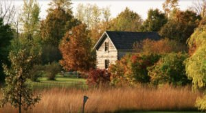Linnaeus Arboretum Is A Fascinating Spot in Minnesota That's Straight Out Of A Fairy Tale