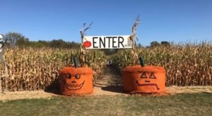 Get Lost In This Awesome 10-Acre Corn Maze Near Detroit This Autumn