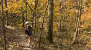 It's Almost Time For The Explosion Of Fall Foliage Around Arkansas' Buffalo National River And We Can't Wait