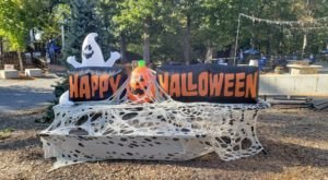 Get In The Halloween Spirit At Zoo Boo At Southwick's Zoo In Massachusetts