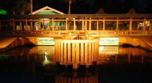 Take A Wild Nighttime Adventure Into A Marsh Full Of Gators During Gatorland's Night Shine Tour In Florida