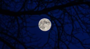 Folklore Predicts A Full Blue Moon Over Ohio This Halloween Because 2020 Wasn't Strange Enough