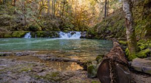 You'll Want To Spend The Entire Day At The Gorgeous Natural Pool In Oregon's Umpqua National Forest