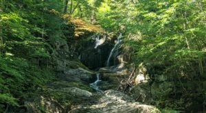 Embark On An Epic 3.8-Mile Trail In Massachusetts That Features Babbling Brooks And A Waterfall
