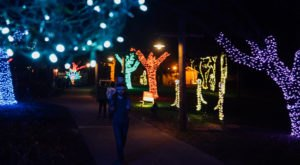 The Whimsical One-Mile ZooLights Experience In Louisiana Will Take You On A Spectacular Nighttime Adventure