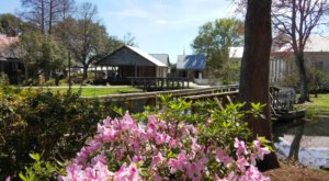 Experience Life In The 1800's With a Visit To Louisiana's Acadian Village