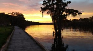 With Stunning Views And A Historic Mansion, Fairview-Riverside State Park Is A Hidden Gem In Louisiana