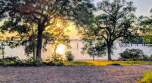 Not Many Know The Fascinating Story Behind Lake Peigneur In Louisiana