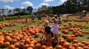 Mrs. Heather's Pumpkin Patch Near New Orleans Is The Perfect Fall Family Day