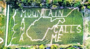The Old McDonald's Corn Maze In West Virginia Is A Classic Fall Tradition