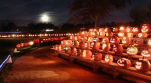 The Syracuse Pumpkin Walk In Utah Is A Classic Fall Tradition