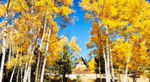 Experience The Fall Colors Like Never Before With A Stay At The Aspen Grove Lodge In New Mexico