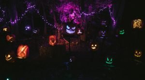 The Great Westerville Pumpkin Glow In Ohio Is A Classic Fall Tradition You Can Drive-Thru This Year