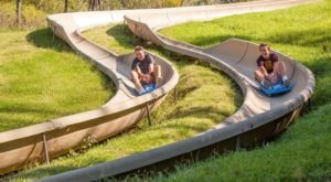 Race Down A 2,500-Foot Alpine Slide In Illinois For A Breathtaking Adventure