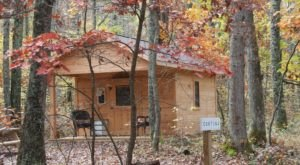 Experience The Fall Colors Like Never Before With A Stay At Wild Yough Glamping Huts In Maryland