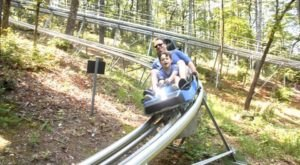 Georgia's Very First Alpine Coaster Is Officially Open For High-Flying Fun