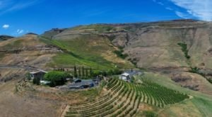 Located Along The Old Spiral Highway, This Idaho Vineyard Offers Sweeping Views With Amazing Wine