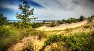Get Out Of Town With A Trip To Indiana Dunes State Park